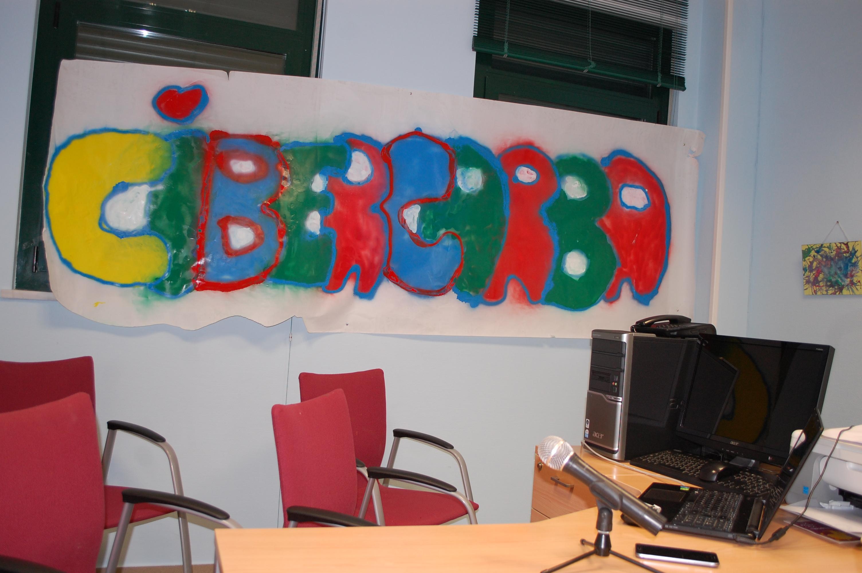 El alcalde  y la concejala presentaron el Proyecto CIBERCARBA