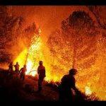 Los Incendios forestales . Artículo destacado en Cibercorresponsales