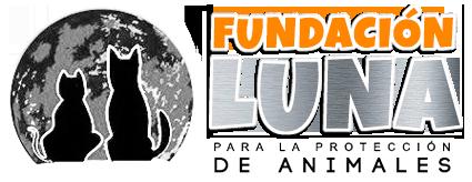 Nuevos animales para adoptar  en Fundación Luna