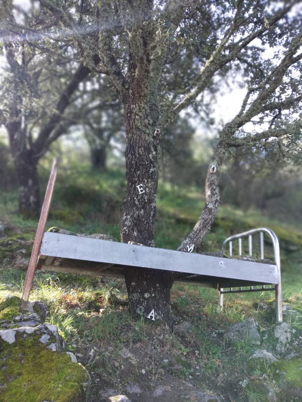 Lugares con encanto en Salamanca:                                   Camino de los Prodigios